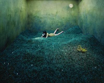 JeeYoung Lee, 'Treasure Hunt', 2010
