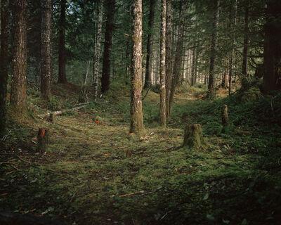 Anna Beeke, 'Windfall II', 2012