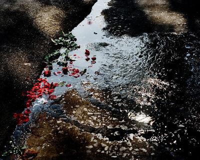 David Drebin, 'Roses', 2012