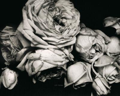 Edward Steichen, 'Edward Steichen: The Early Years, 1900-1927', 1900-1927