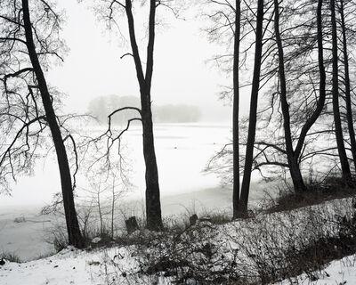 Hans-Christian Schink, 'Am Breiten Luzin', 2012
