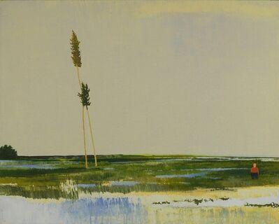 Wan-Chun Wang, 'Marsh in Meditation', 2013
