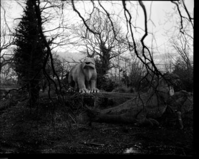 Tom Hunter, 'Dinosaurs' Island', 2017