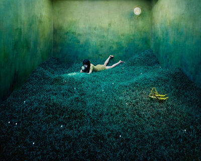 JeeYoung Lee, 'Treasure Hunt', 2010