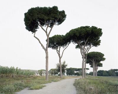 Hans-Christian Schink, 'Aqua Claudia (Parco degli Acquedotti 1)', 2014
