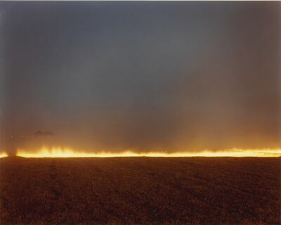 Richard Misrach, ''Desert Fire No. 248''
