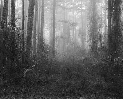 Matthew Genitempo, 'Untitled 03'