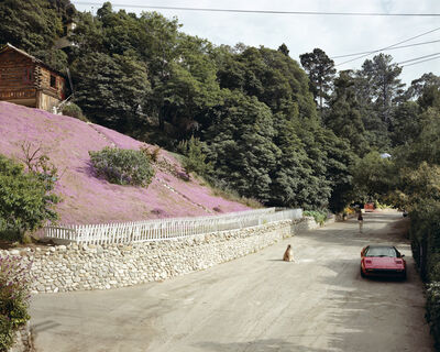 Joel Sternfeld, 'Rustic Canyon, Santa Monica, California May 1979', 1979