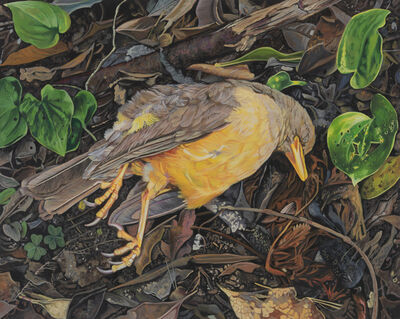 Deborah Poynton, 'Bird', 2020