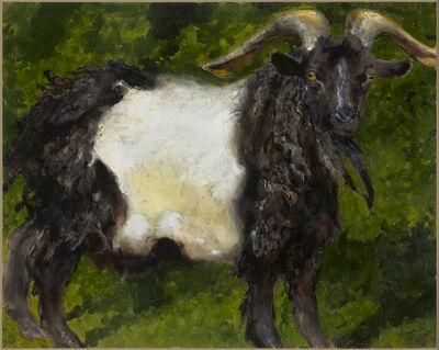 Jamie Wyeth, 'Black and White Goat', 2008