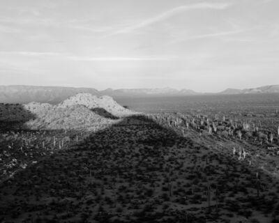 Michael Berman, '96W_091 Shadow, Cabeza Prieta National Wildlife Refuge, Arizona', 2018