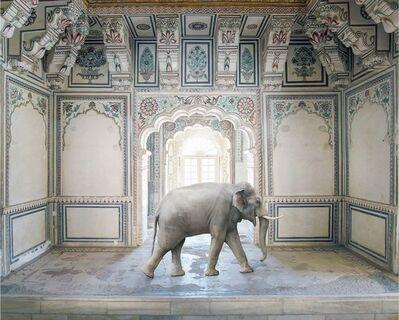 Karen Knorr, 'Ganesha's Stride, Abha Mahal, Ahichhatragarh, Nagaur', 2015