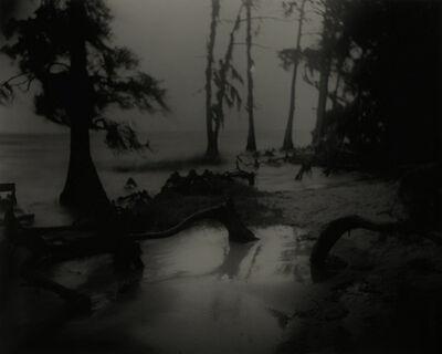 Sally Mann, 'Bones II', 1998
