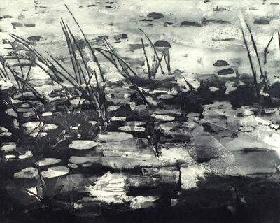 Matt Saunders, 'Landscape I (Swamp)', 2015