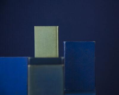 Mary Ellen Bartley, 'Blue Books One Green', 2010