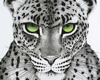 Rose Corcoran, '8. Green Eyed Leopard', 2018