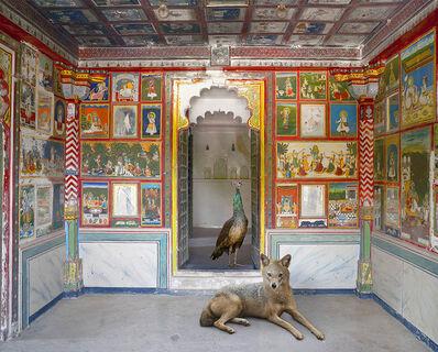 Karen Knorr, 'The Lion's Saviour, Zanana, Dungarpur Palace'