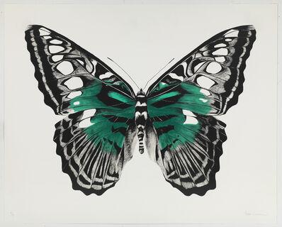 Rose Corcoran, 'Butterfly Green Silkscreen'
