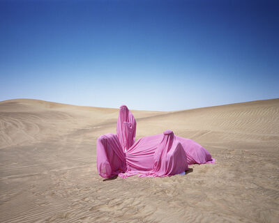 Scarlett Hooft  Graafland, 'Still life with Camel', 2016