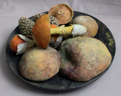 Rafael Muyor, 'plate with mushrooms', 2019