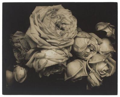 Edward Steichen, 'Heavy Roses, Voulangis, France', 1914