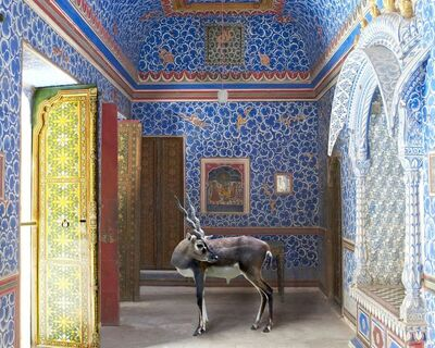 Karen Knorr, 'The Sound of Rain, Junagarh Fort, Bikaner', 2011