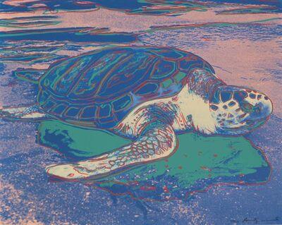 Andy Warhol, 'Turtle II.360A', 1985