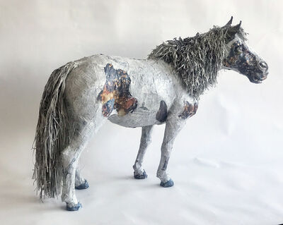 Will Kurtz, 'Einstein, World's Smallest Stallion', 2014
