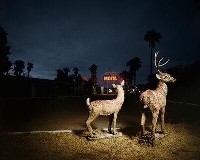 Pamela Littky, 'Lawn Deer', 2009-2012