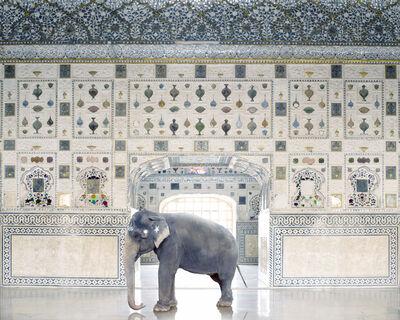 Karen Knorr, 'Temple Servant, Amber Fort , Jaipur', 2014
