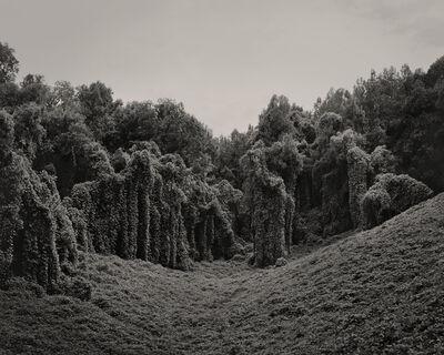 Helene Schmitz, 'Alabama Fields', 2013