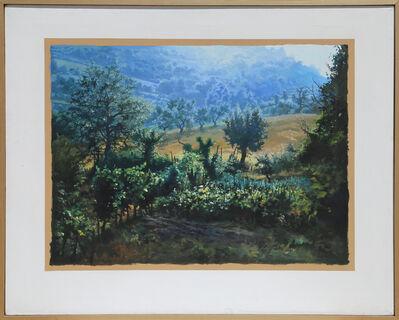 Ian Hornak, 'Italy, Garden, Coming Rain', 1970