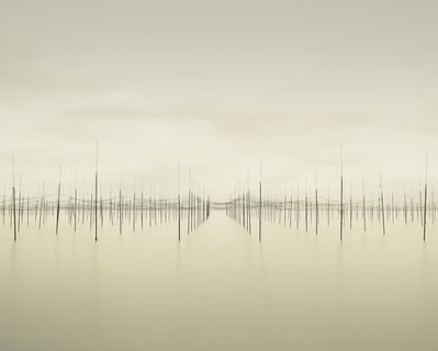 David Burdeny, 'Matrix, Shimabara Bay, Japan - Ancora', 2010