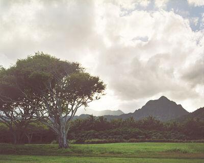 LM Chabot, 'Hawaii 10', ca. 2015