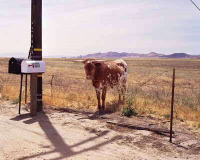 Ed Panar, 'California Valley', 2008