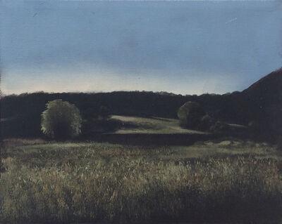 Eileen Murphy, 'Untitled Landscape II', 2018
