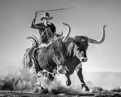 David Yarrow, 'Ain't My First Rodeo', 2021