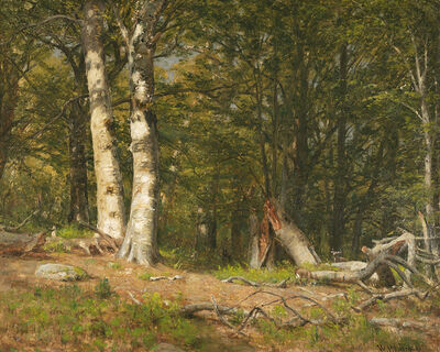 Worthington Whittredge, 'Fallen Birch'
