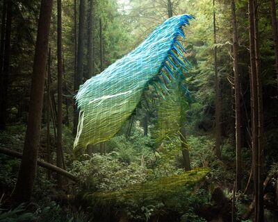 Mark Dorf, 'untitled20', 2013