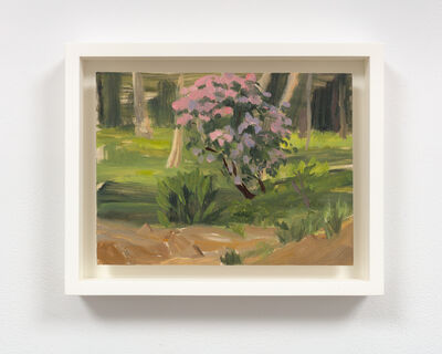 Hilary Harkness, 'Rhododendron at Sunset, May 25, 2018', 2018