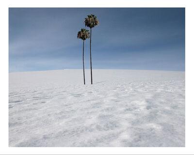 Max Steven Grossman, 'Antartica No. 1, ed. 1/5', 2010