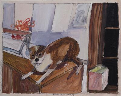Robert Andrew Parker, 'Stubber the Boston Bulldog', 2016