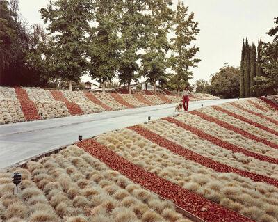 Joel Sternfeld, 'Beverly Hills, California, May', 1979