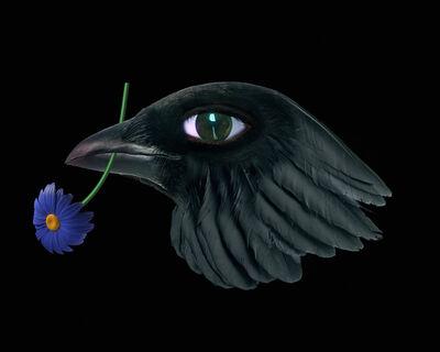 Agnieszka Polska, 'Bird with Flower', 2018
