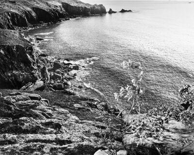Holly King, 'Shipwreck', 2015