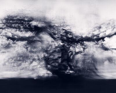 Christina Craemer, 'Angelic Lines', 2018
