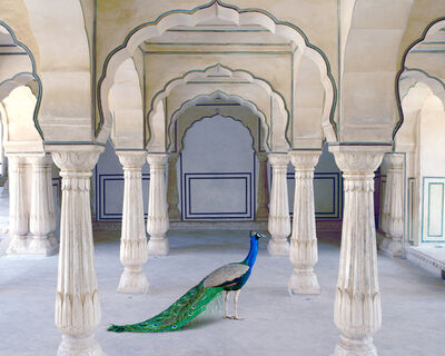 Karen Knorr, 'A Moment of Solitude, Amer Fort, Amer', 2021