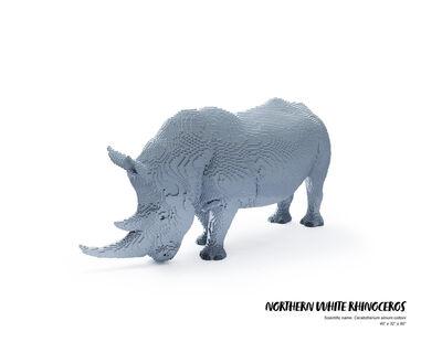 Nathan Sawaya, 'Northern White Rhinoceros', 2019