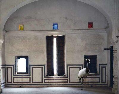 Karen Knorr, 'Light of the World, Zanana Room, Nawalgarh'