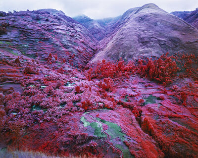 Richard Mosse, 'Non-Alignment Pact', 2015